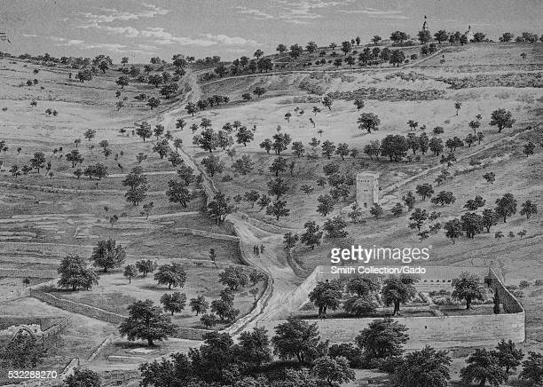 Lithograph depicting a panorama with hills trees a road and some stone structures titled Mount of Olives and the Garden of Gethsemane 1864 From the...