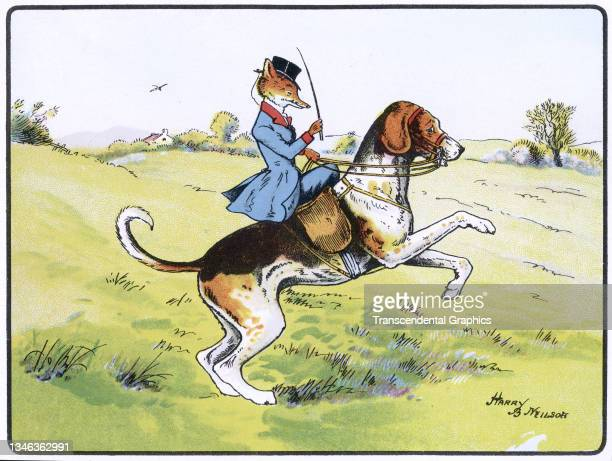 Lithographic color plate features an illustration of an anthropomorphic fox dressed in hunting clothes as he rides a dog that rears up on its hind...