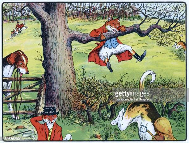 Lithographic color plate features an illustration of an anthropomorphic fox in hunting clothes caught in a tree after a rump, 1921. It appears in the...