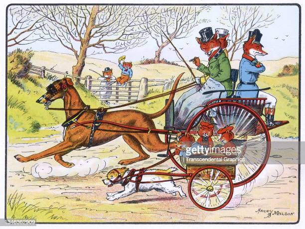 Lithographic color plate features an illustration of anthropomorphic foxes riding in dog-drawn carts, 1921. It appears in the children's book 'The...