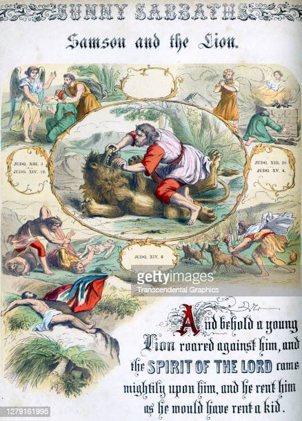Lithographic plate depicts a scene and text from the Bible story of 'Samson and the Lion' late 19th century The book whose full title is 'Sunny...