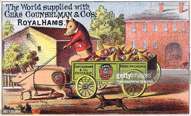 A lithographic Victorian trade card promoting packaged hams New York New York circa 1880