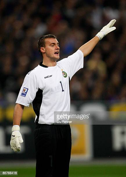 Lithuania goalkeeper Zydrunas Karcemarskas in action during the group 7 FIFA2010 World Cup Qualifier between France and Lithuania at Saint Denis...