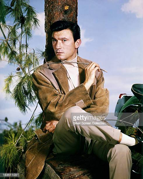 Lithuanianborn actor Laurence Harvey sitting under a conifer circa 1960