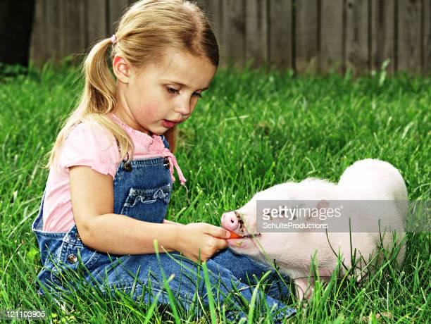 Little Girl und Schwein