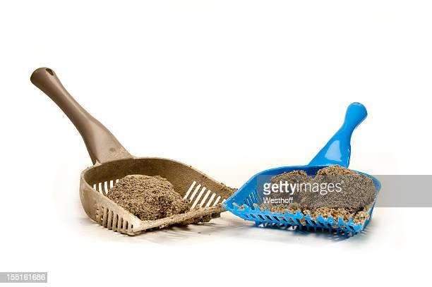 litter box cleaning - litter box stock photos and pictures