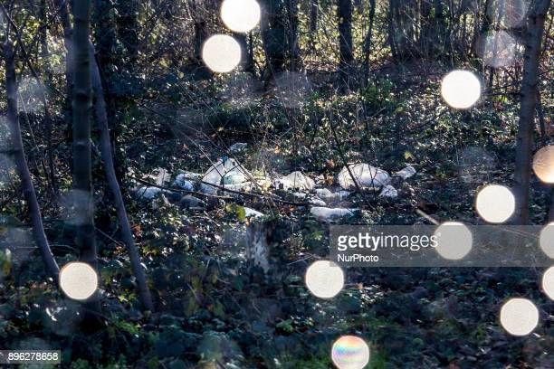 Litter left in the woods by immigrants in Calais France