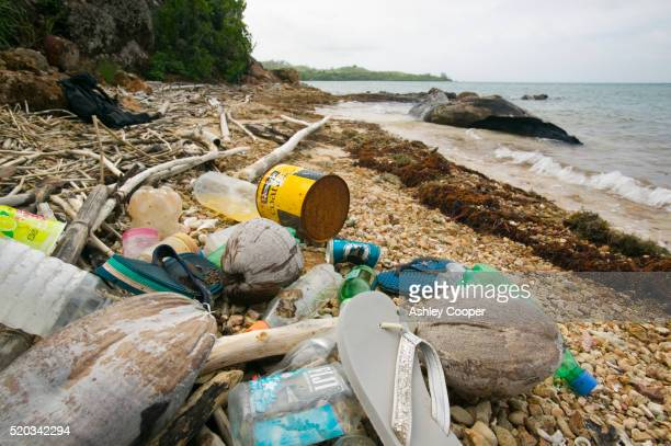litter on beach on malolo island - pacific islands stock pictures, royalty-free photos & images