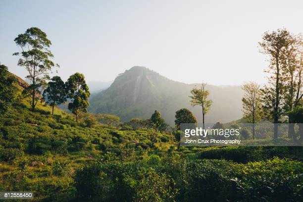 little adams peak scenery