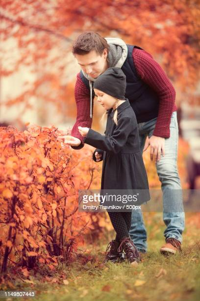 little adorable girl with dad in autumn park at warm day - mint plant family fotografías e imágenes de stock