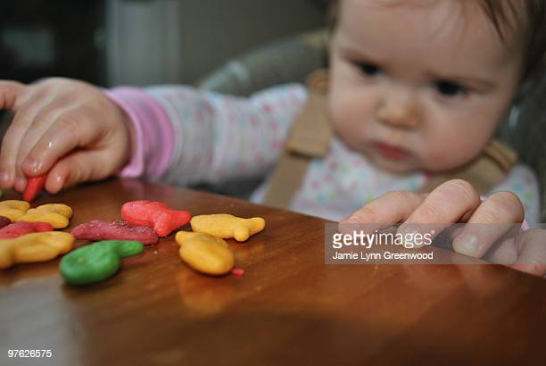a little baby playing - lynn pleasant stock pictures, royalty-free photos & images