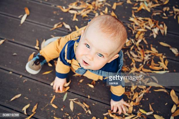 little baby playing with autumn leaves on a wooden floor - baby boys stock pictures, royalty-free photos & images