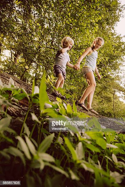 Little boy and girl balancing on fallen tree in forest