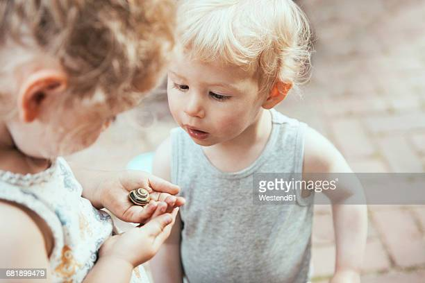 little boy and girl looking at a snail in hand - curiosity stock photos and pictures