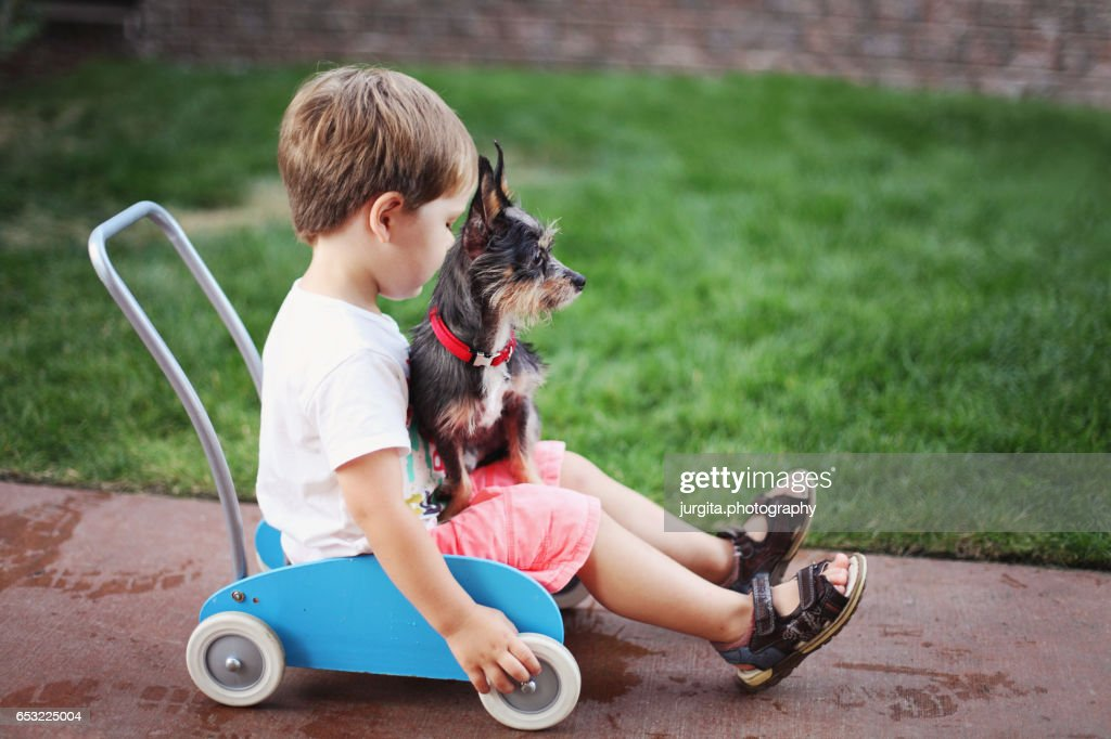 Little boy and his puppy playing in the yard : Foto de stock