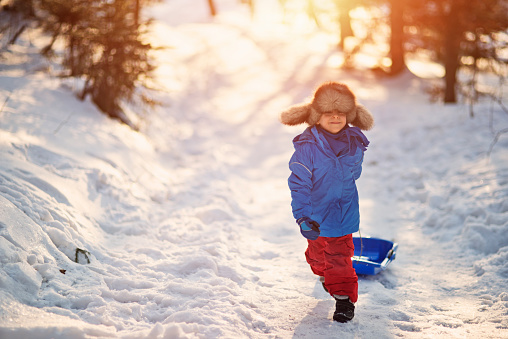 Little boy and his sled in winter worest. 493711708