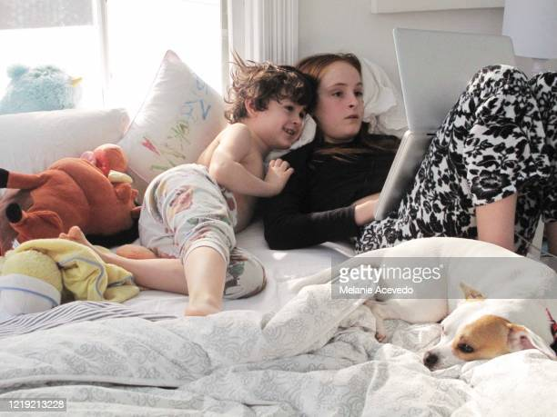 Little boy and little girl who are brother and sister lying in bed together playing on a computer. The big sister is the one holding the computer. They are both looking at the screen together. Their white dog is also in the bed with them.