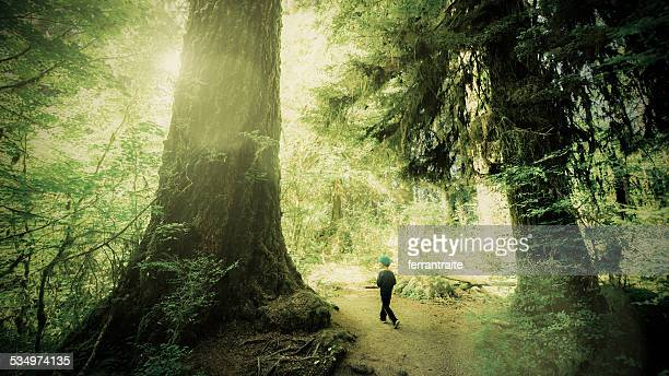 Little Boy at Olympic National Park