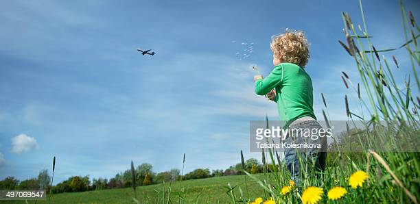 Little boy blowing dandelion