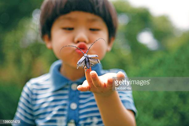 little boy blowing insect - 昆虫 ストックフォトと画像