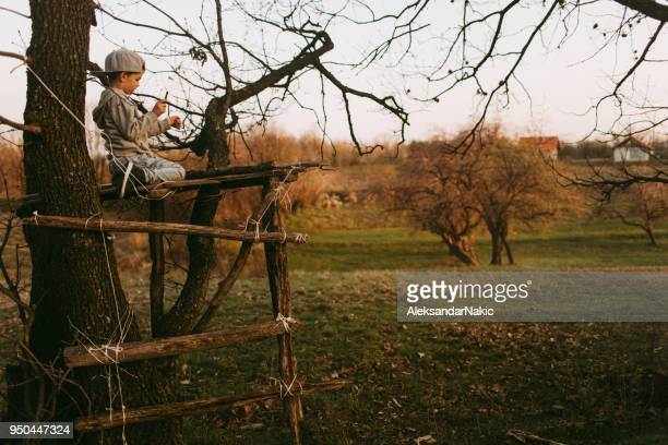 little boy building a tree house - tree house stock pictures, royalty-free photos & images