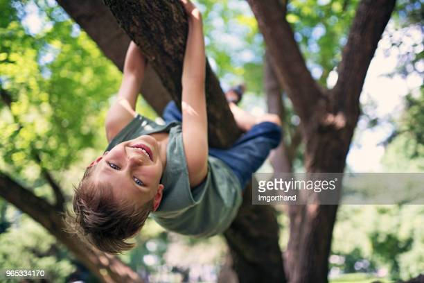 little boy climbing the tree - mountaineering stock pictures, royalty-free photos & images