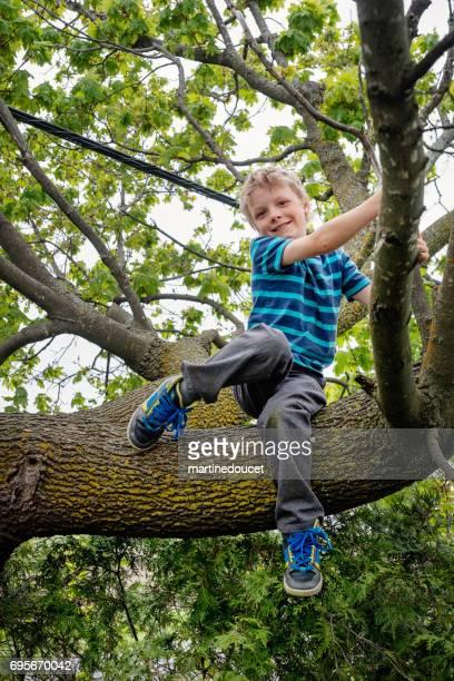 Little boy climbing very high tree in sprintime.
