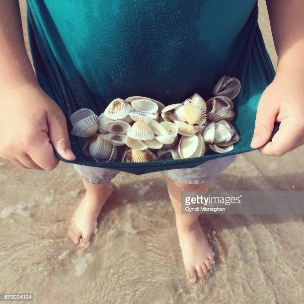 Little Boy Collecting Shells