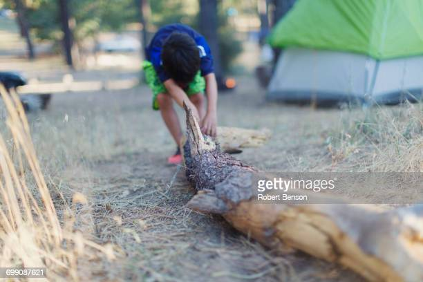 a little boy drags a log of wood over the ground. - dragging stock pictures, royalty-free photos & images