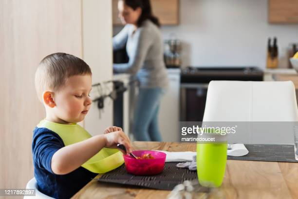 "little boy eating his plate at lunch time. - ""martine doucet"" or martinedoucet stock pictures, royalty-free photos & images"