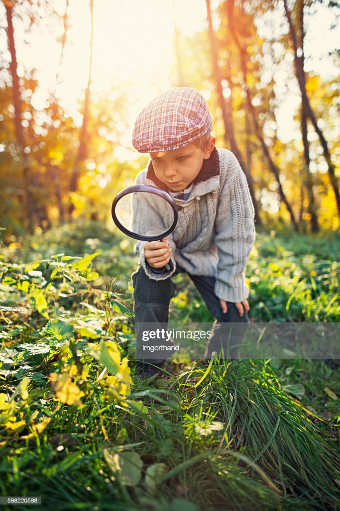 Little boy exploring nature in autumn forest : Stock Photo
