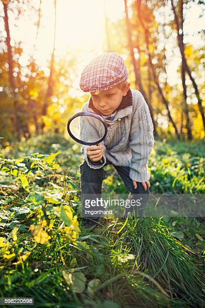 Little boy exploring nature in autumn forest