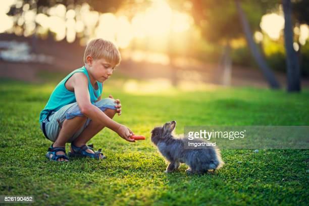Little boy feeding his rabbit in the backyard