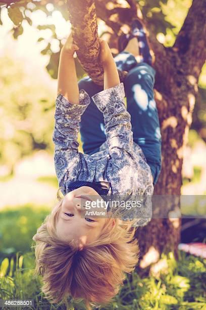 Kleine Jungen hängen auf ein tree branch