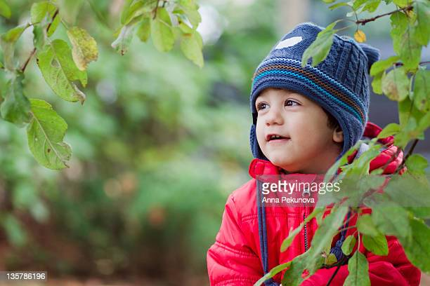 Little boy hiding behind branch of tree