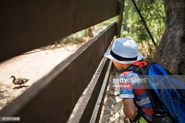 Little boy hiker observing a duck