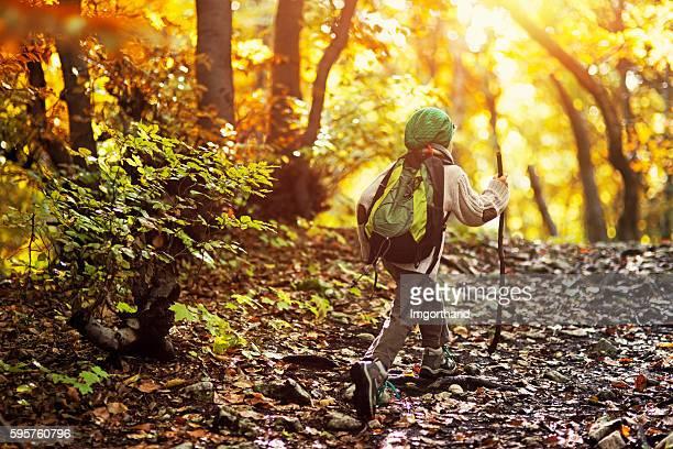 Little boy hiking in an autumn forest