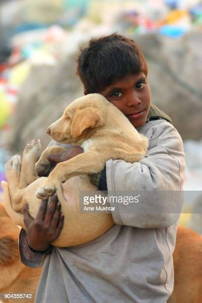 little boy holding a dog in his arms - cute pakistani boys stock photos and pictures