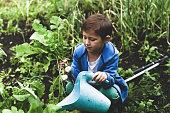 little boy gardening