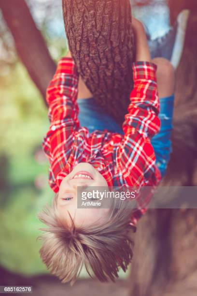 little boy in park in summer - children only stock pictures, royalty-free photos & images