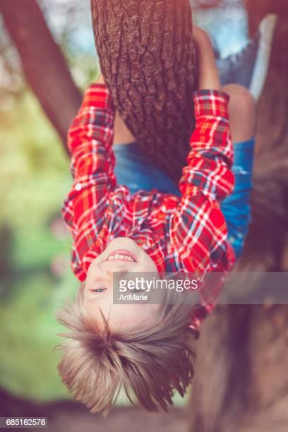Kleiner Junge im Park im Sommer