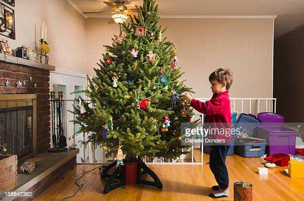 """little boy in red sweater decorates christmas tree - """"danielle donders"""" stock pictures, royalty-free photos & images"""