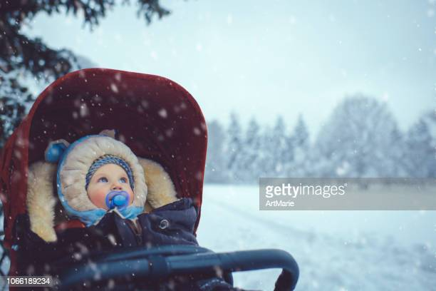 little boy in stroller in winter park - carriage stock pictures, royalty-free photos & images
