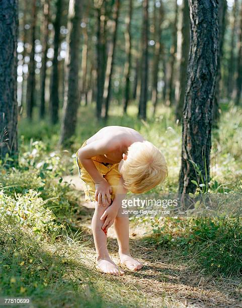 a little boy in the forest. - bandage stock photos and pictures