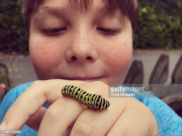 Little Boy Looking at a Caterpillar