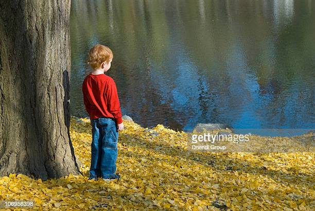 A little boy looking at a pond.