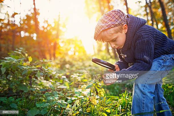 Little boy observing seeds of touch-me-not plant