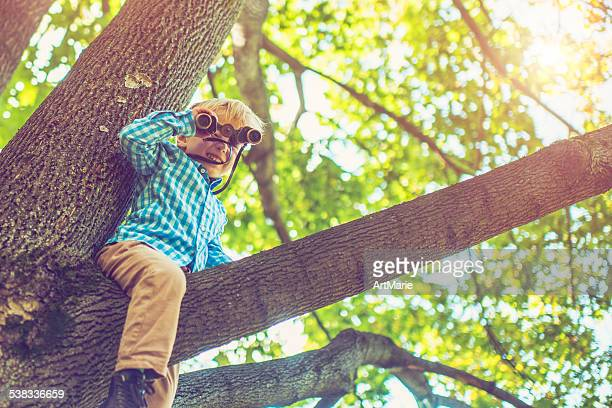 Kleine Junge auf einem Baum