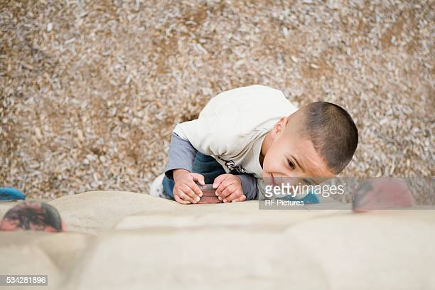 Little Boy on Climbing Wall
