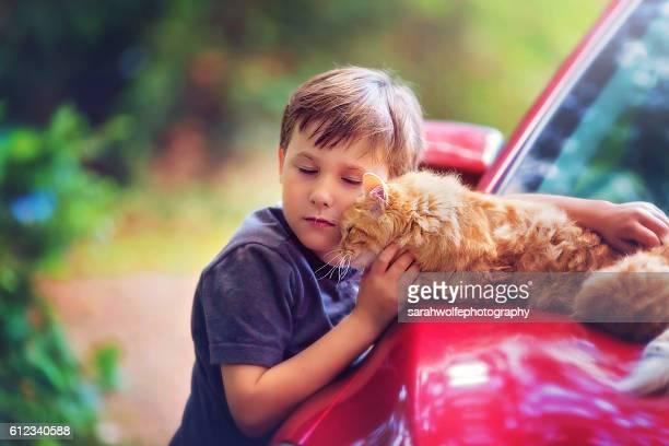 little boy petting a cat lying on a car